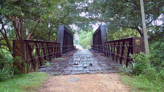 lunugamvehera-national-park